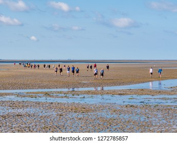 AMELAND, NETHERLANDS - AUG 27, 2017: Group of people mud flat hiking on Wadden Sea at low tide from Friesland to West Frisian island Ameland, Netherlands