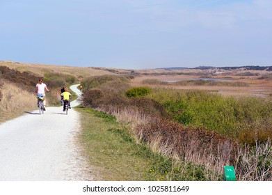 ameland, netherlands, dunes wit cyclists on the bike path