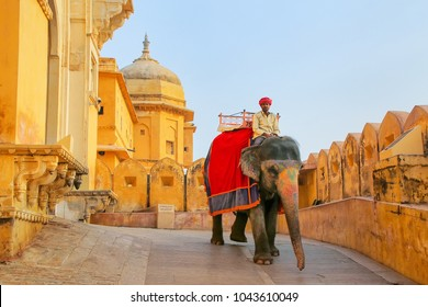 AMER, INDIA - NOVEMBER 13: Unidentified man rides decorated elephant from Amber Fort on November 13, 2014 in Amber, India. Elephant rides are popular tourist attraction in Amber Fort.