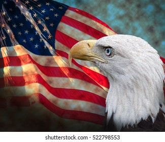 American Bald Eagle and American Flag