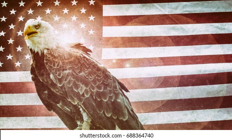 American Bald Eagle Flag Classic. Bald Eagle, symbol of American freedom, perched in front of a classic American flag. United States of America patriotic symbols.