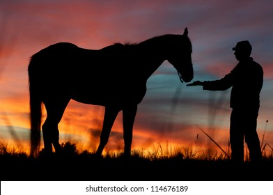 American civil war soldier with his horse