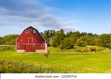 American Countryside With Blue Cloudy Sky