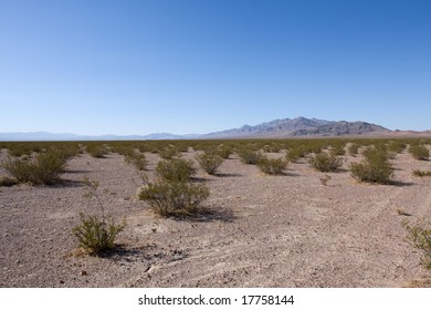 American desert in California over blue sky