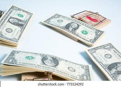 american dollars in mouse trap for your concept