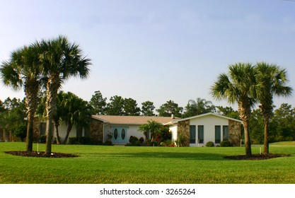 American Dream Home with palm trees, blue doors, and space for text