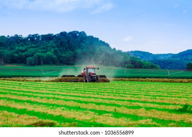 American Farm With Tractor