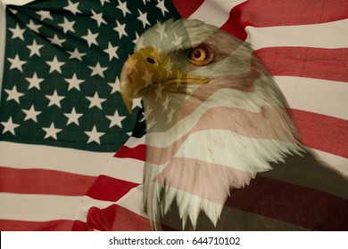 American flag with eagle. National symbol for USA.