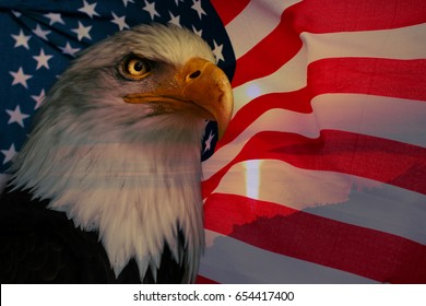 American flag with american eagle and sunlight. American nationally symbol.