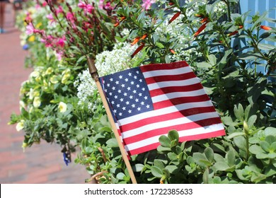 American Flag and Flowers In July