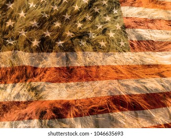 American flag on the fur background