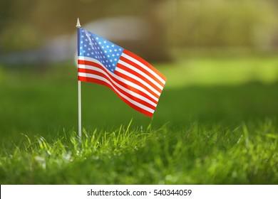 American flag on green grass, closeup