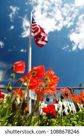 american flag on poppy fields, USA Memorial Day concept