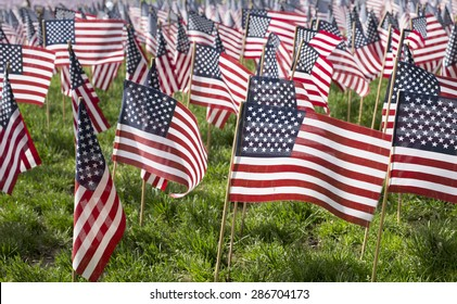 American flags displaying on Memorial Day