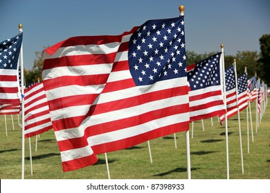 American Flags Flying in Wind at a Park
