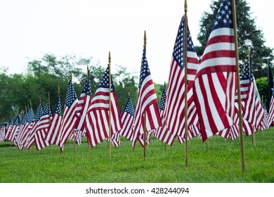 American flags on display for memorial day weekend