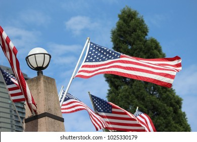 American flags waving in the wind.