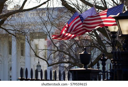 American Flags at The White House