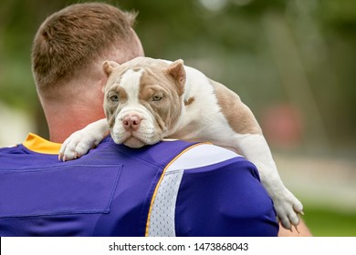 American football player with a dog posing on camera in a park. Copy space, sports banner. Concept american football, sport for the protection of animals.