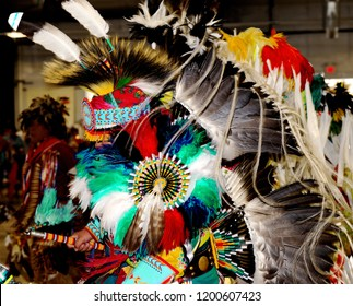 American Indian: Feather bustle and headdress of powwow dancer.