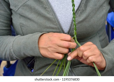 American Indian woman braids sweetgrass .