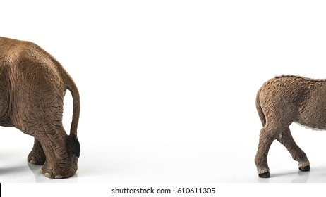 American politics, election and democracy concept with donkey (symbol for democrat, liberal, progressive) and elephant (symbolizing republican, conservative, traditionalist) with border and copy space