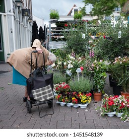 amersfoort, netherlands, 15 june 2019: old lady with shopping trolley on flower market in dutch town of amersfoort