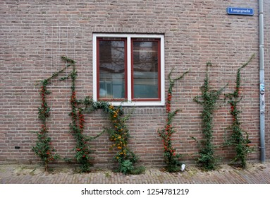 Amersfoort Street, Netherlands