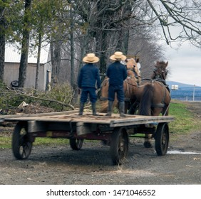 Amish boys riding back view