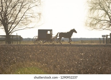 An Amish buggy drawn by a trotting horse, Lancaster County, PA