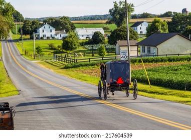 Amish buggy goes down road in rural Pennsylvania.