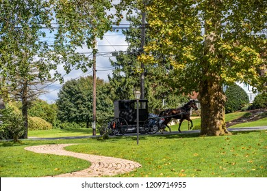 Amish buggy with a horse visible on a road through trees. Sunny day. Summer or early fall.