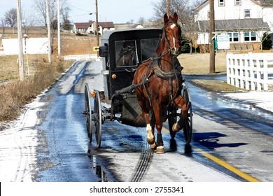 Amish buggy near Lancaster, PA. February 2007