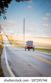 Amish buggy on isolated country road