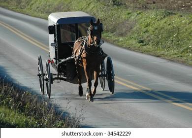 An Amish buggy in Pennsylvania