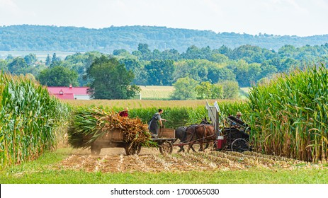 Amish Country, Lancaster PA US - September 4 2019, Amish country field agriculture, harvest, horse, farm, barn in Lancaster, PA US.