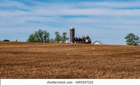 Amish Farmers Planting with 4 Horses on a Hill on a Sunny Spring Day