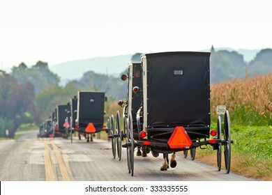 Amish horse and buggies traveling in lancaster county, pennsylvania in the fall