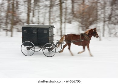 An Amish horse and buggy driving along a snowy winter road, with panning motion blur on everything but horse and carriage.