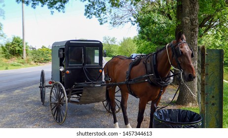 Amish Horse and Buggy Tied Up Waiting for it's Driver