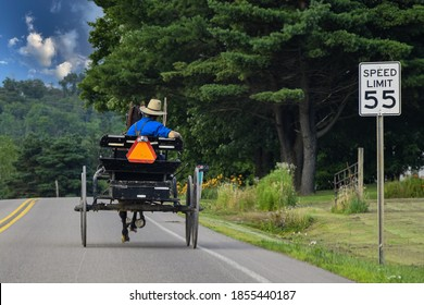 Amish man driving horse and wagon on two lane road with speed limit sign in frame