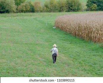 Amish man walking in the field