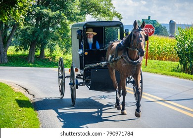 AMISH PENNSYLVANIA, USA - SEPTEMBER 16, 2017: Traveling in black carriage in Amish Country in Pennsylvania, USA