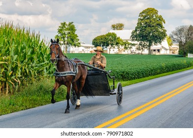 AMISH PENNSYLVANIA, USA - SEPTEMBER 16, 2017: Traveling in open carriage in Amish Country in Pennsylvania, USA