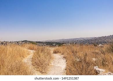 The Amman Citadel is a historical, Umayyad Palace, Citadel hill of Amman, cityscape, modern city and Historical city