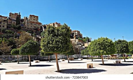 Amman city view from public park