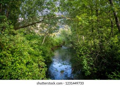 Ammer creek near Oberammergau
