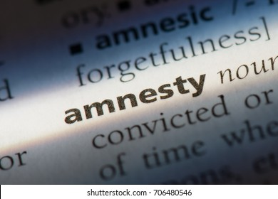 Amnesty word in a dictionary. Amnesty concept