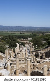 Among the tree-covered hills columns and ruins of the ancient city of Ephesus against the blue sky