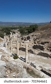 Among the tree-covered hills columns and ruins of the ancient city of Ephesus against the blue sky and mountains in the distance
